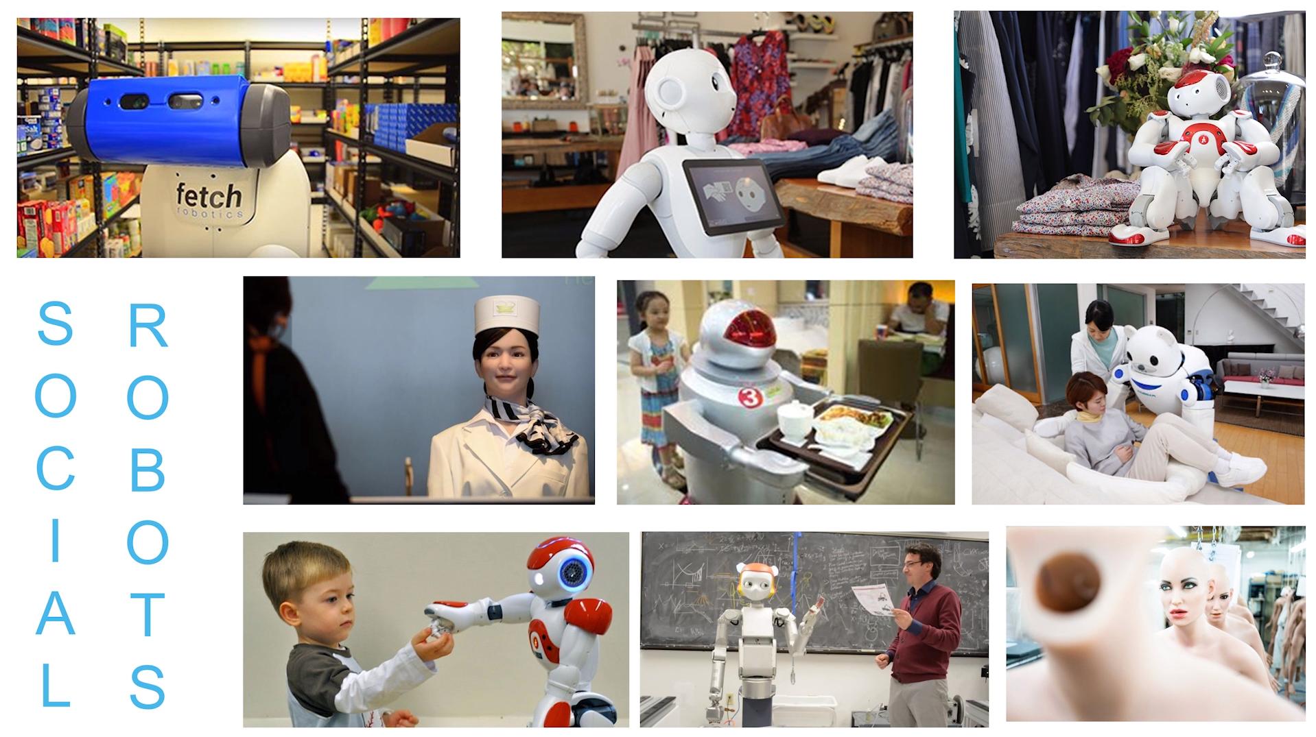 Schmitt_Human or Robot_2