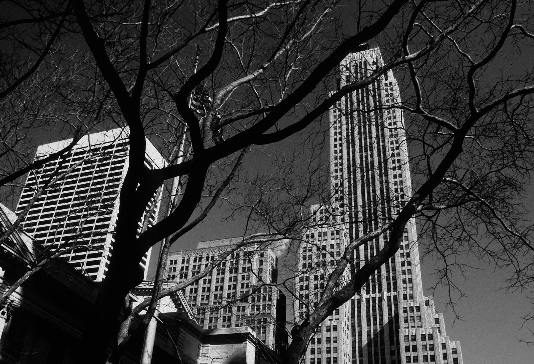 42_88-New York_1_0025_80x54_ArtShop